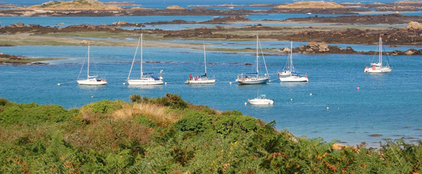 Étude préalable à la dératisation de l'archipel de Chausey (50)