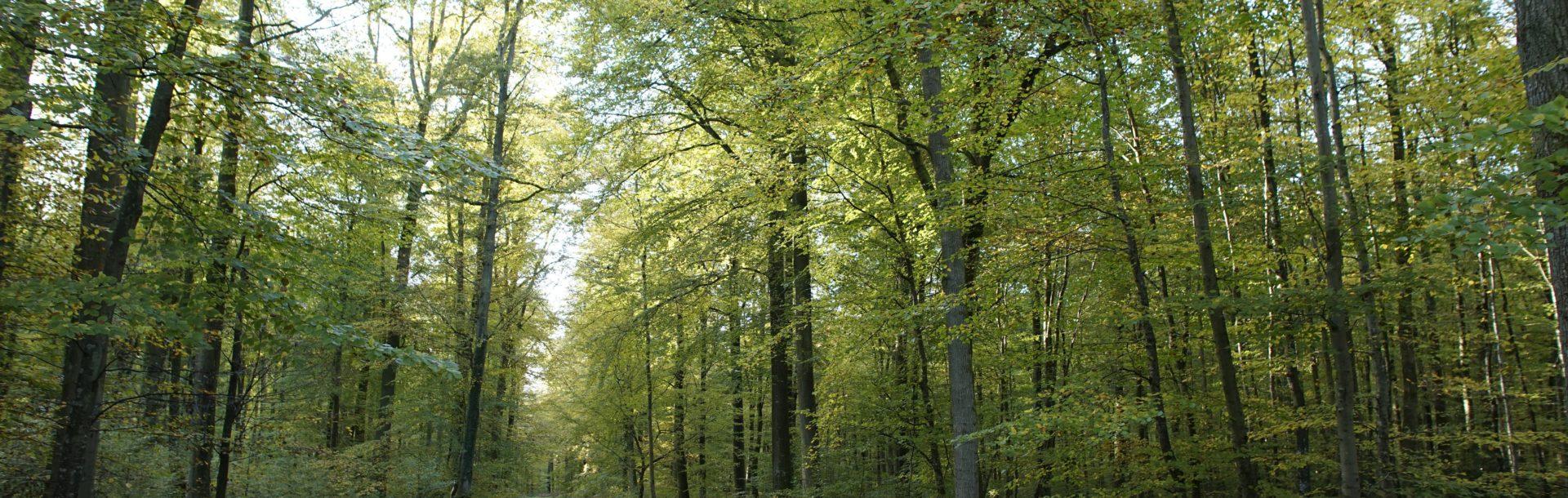 La biodiversité en Normandie