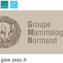 Groupe Mammalogique Normand