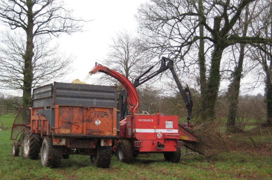 Circuit 02 : Plantation, valorisation économique, insertion : la filière bois bocage énergie comme levier de transition du bocage Virois