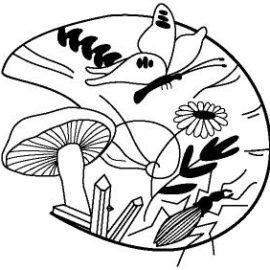 Société d'Etude des Sciences Naturelles d'Elbeuf