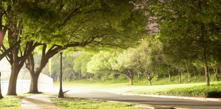 [Octobre 2020 à mars 2021] Cycle de 6 webinaires sur la qualité de l'air