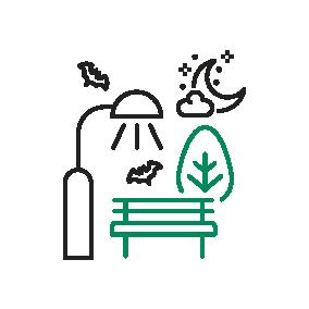 [Retour sur l'atelier technique] Trame noire et biodiversité : comment lutter contre la pollution lumineuse ?