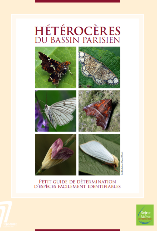 Hétérocères du bassin parisien. Petit guide de détermination d'espèces facilement identifiables