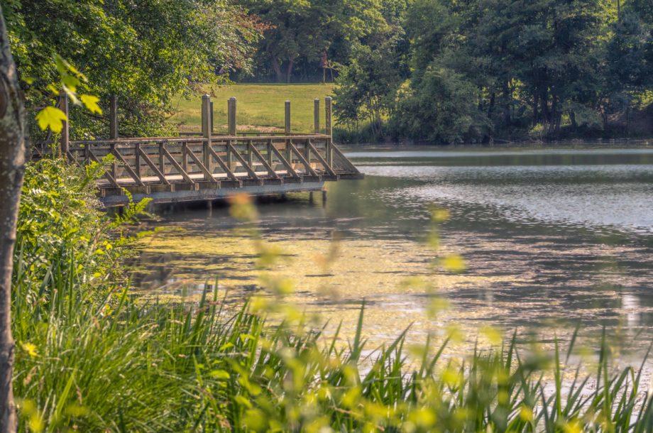 [Présentation] La qualité des rivières du bassin de la Seine et des cours d'eau côtiers normands 2020