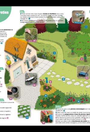 Mon jardin sans pesticides : c'est possible !