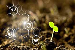 [Aide financière] Dispositif Tremplin pour la transition écologique des PME
