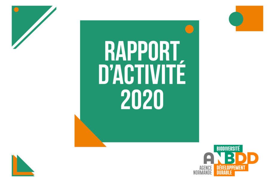 Rapport d'activité 2020 – ANBDD