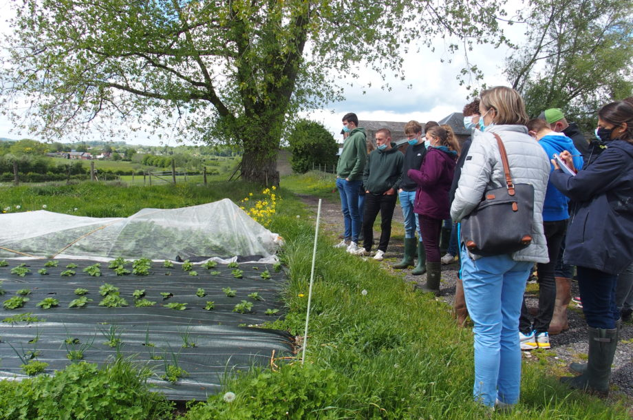 Agroécologie : nouvelles visites de terrain en Normandie