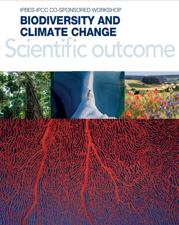 Biodiversity and climate change. Scientific outcome