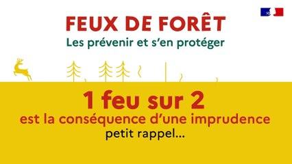 Feux de forêt et de végétation : les prévenir et s'en protéger