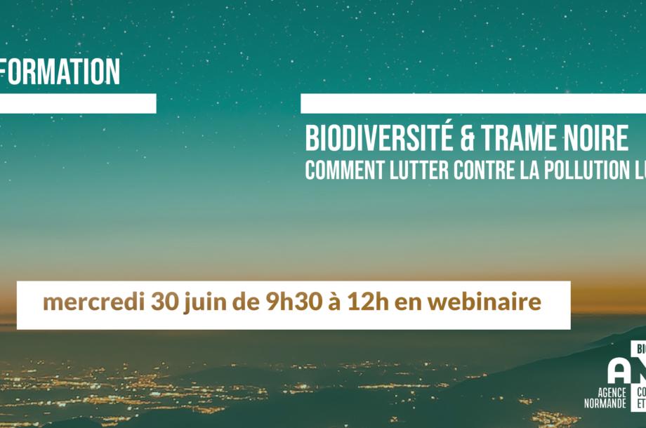 [Formation en webinaire] Biodiversité et trame noire, comment lutter contre la pollution lumineuse ? (nouvelle session)