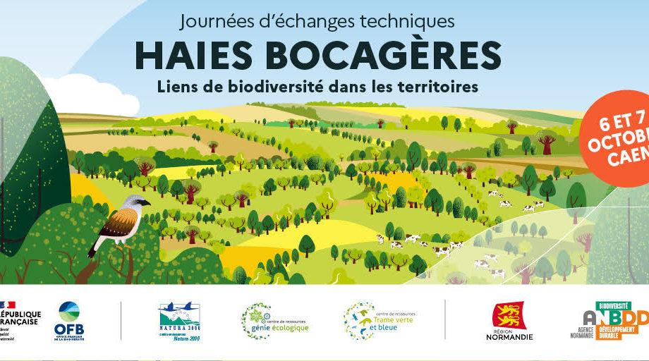 [Journées d'échanges techniques nationales] Haies bocagères : liens de biodiversité dans les territoires