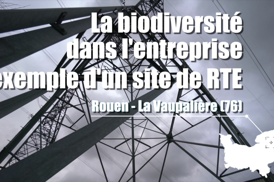 La Biodiversité dans l'entreprise : RTE, site de la Vaupalière