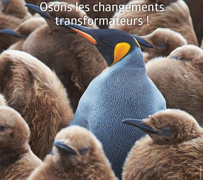 [Journée thématique] Agir en faveur de la biodiversité – Osons les changements transformateurs !