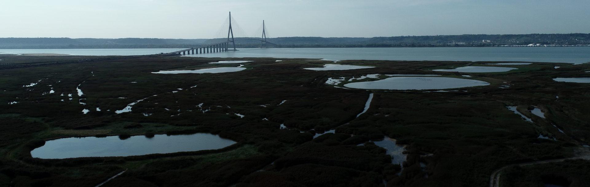 Installation de panneaux de présentation de la réserve naturelle au Pont de Normandie