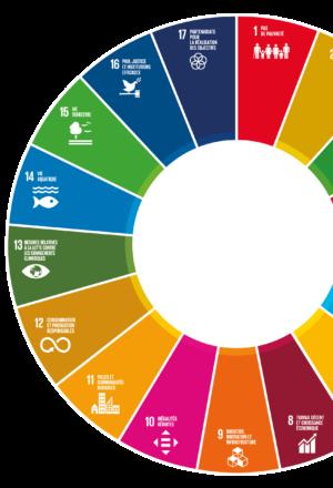[Fiche-ressources] Les Objectifs de Développement Durable