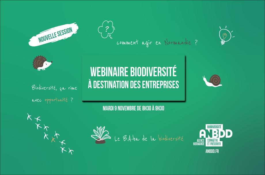 [Webinaire] Entreprises et biodiversité : comprendre pourquoi et comment agir en Normandie